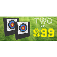 Flash Sale - $99 for 2x  Single Foam Target